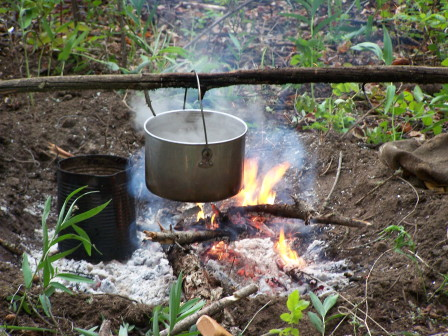 campfire-cooking