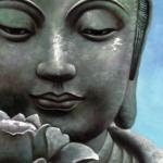 BUDDHA + LOTUS