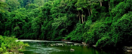 Borneo-Danum-Valley