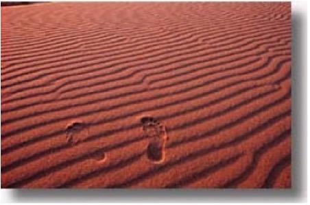 FOOTSTEPS IN DESERT SAND