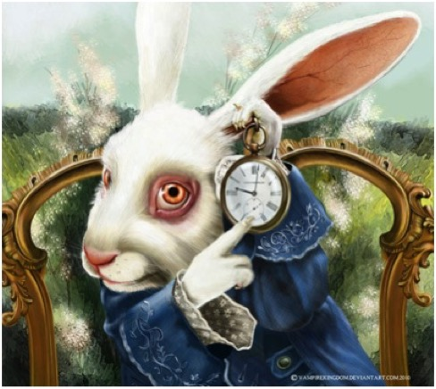 WHITE RABBIT + WATCH LGE